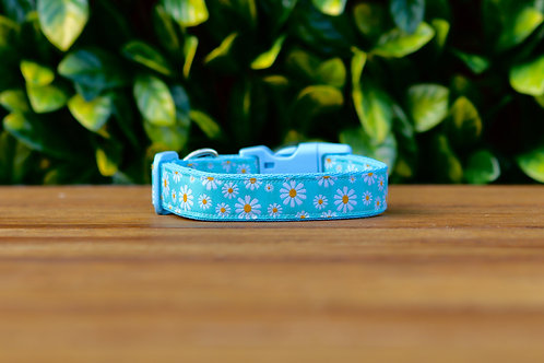 Blue Daisy Dog Collar / XS - L