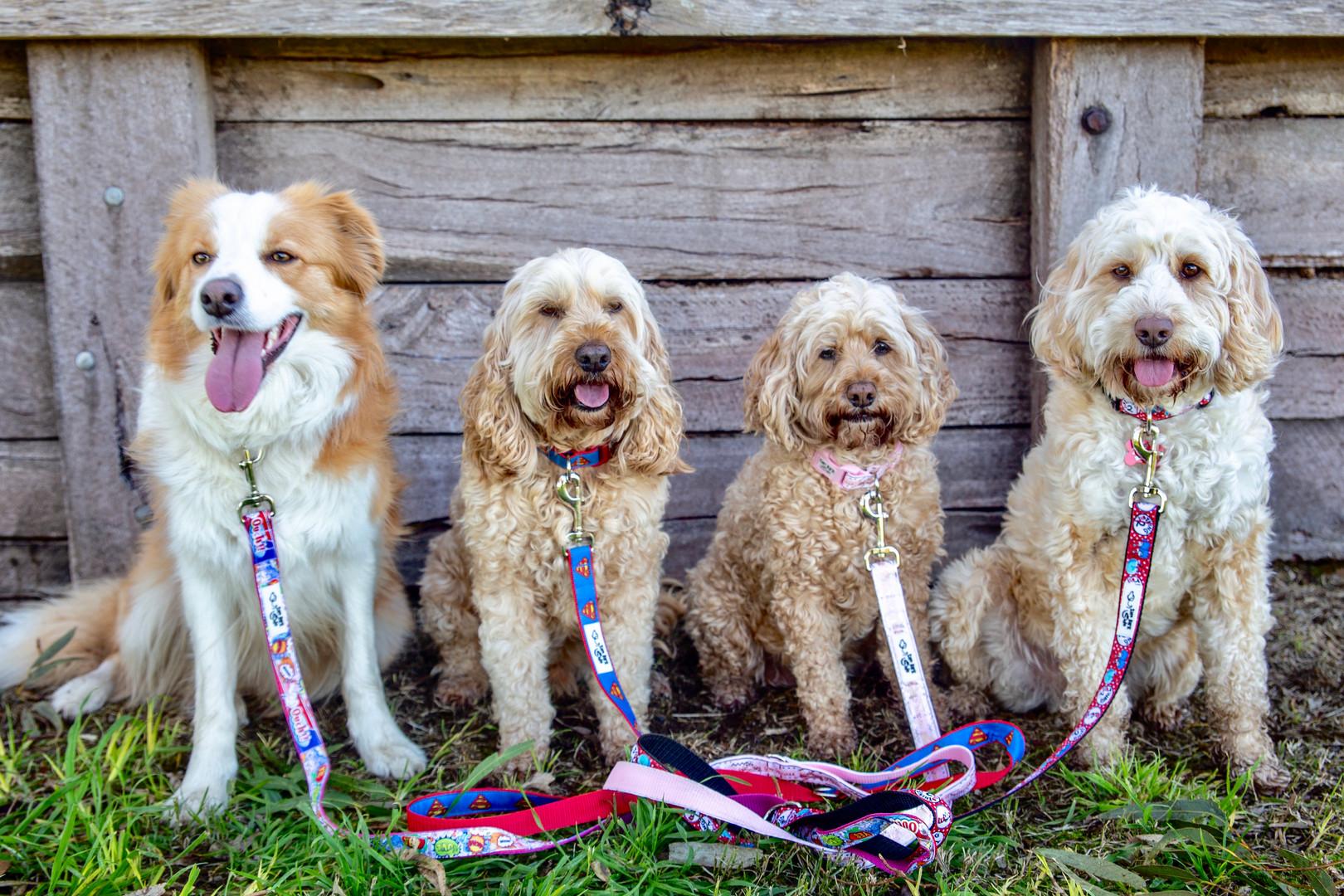 Sally, Bronson, Lacy & Tucker