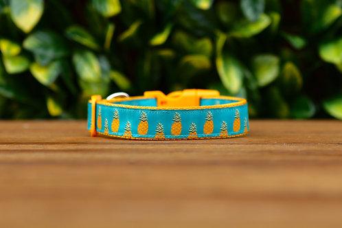 Pineapple Dog Collar / XS - L
