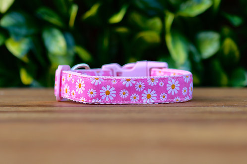Pink Daisy Dog Collar / XS - L