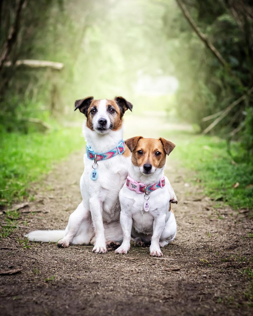Holly & Jessie