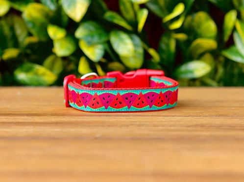Watermelon Dog Collar / S - L