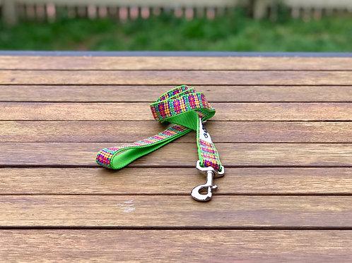 Rainbow Plaid Dog Lead / Tartan / Dog Leash