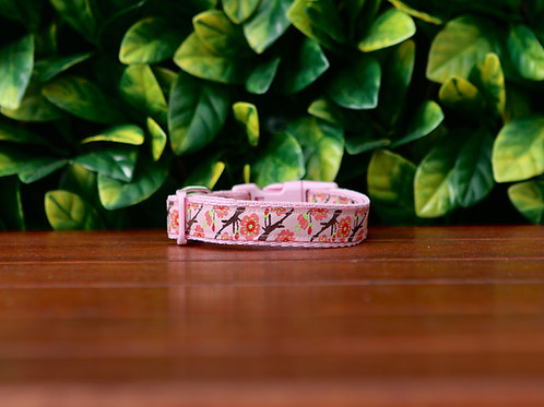 Cherry Blossom Dog Collar / Sakura / XS - M