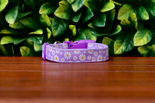 Purple Daisy Dog Collar / XS - L