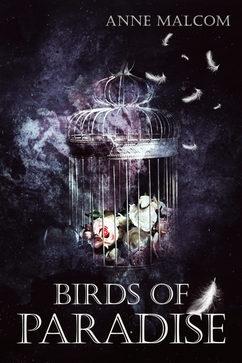 Birs-of-paradise-eBook-complete.jpg