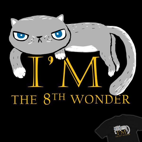 It's A Cat !!!