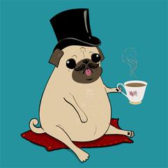 Sir Pugsley, The Gentleman Pug