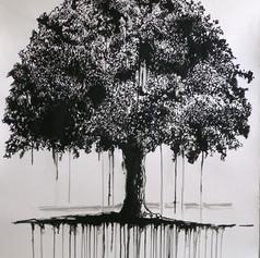 Tree01-ap90x70.jpg