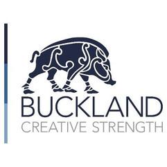 Tech Expo UK sponsors Buckland media.jpg