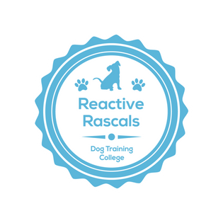 Reactive_Rascals (1) (1).png