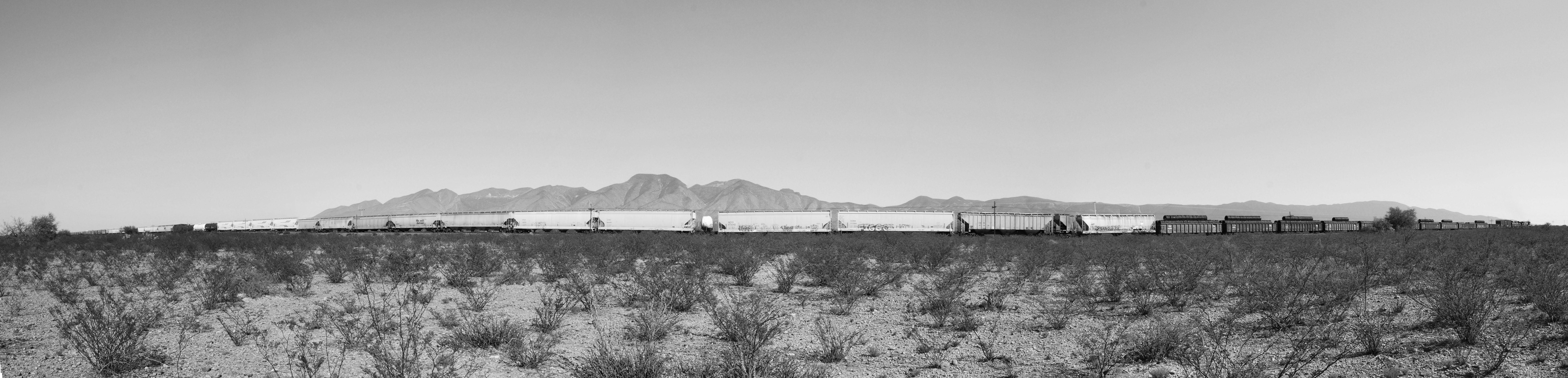 Sans Desert, 2009