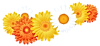 Decoration_with_Gerberas_PNG_Image_edite