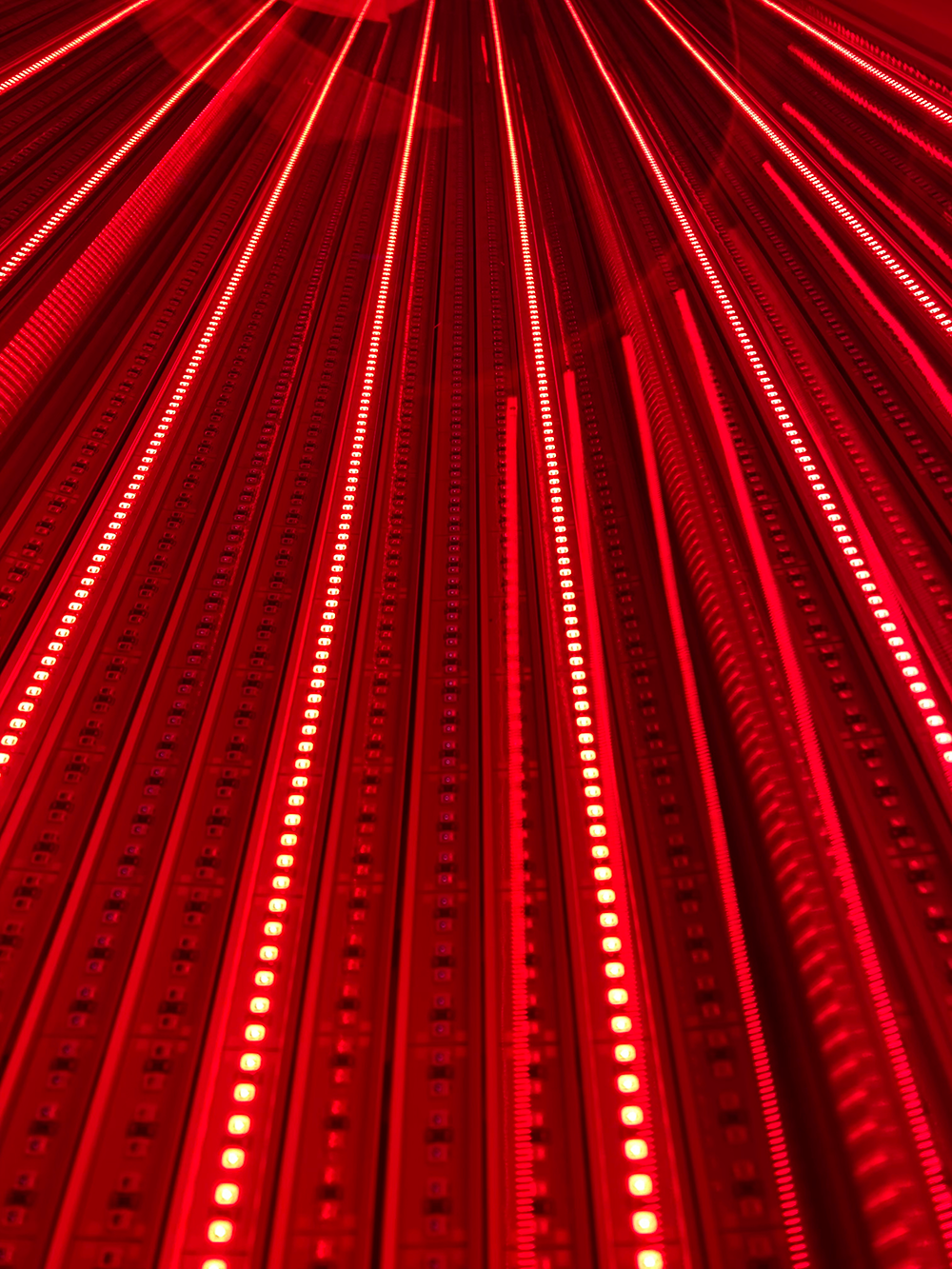 theralight_360_hd_light_bed_full_LED.png