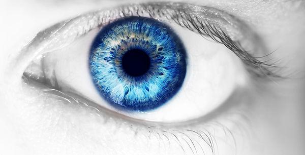 beautiful human eye, macro, close up  bl