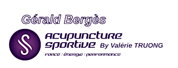 Synergie Gérald Bergès pays basque.png