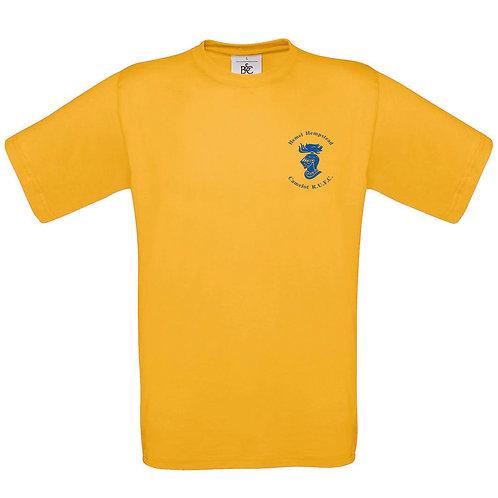 Camelot T-Shirt - Gold (BA190)