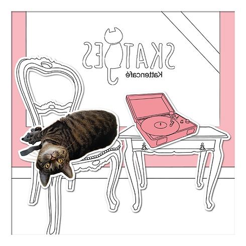 Onze katten-Harm-01.png