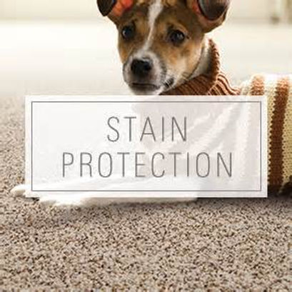 Clean Master Experience Stain Protection city Hull