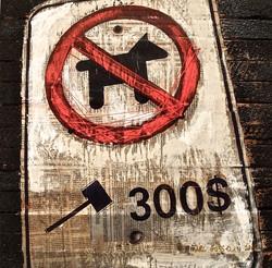 Signalisation, pas de pitbull