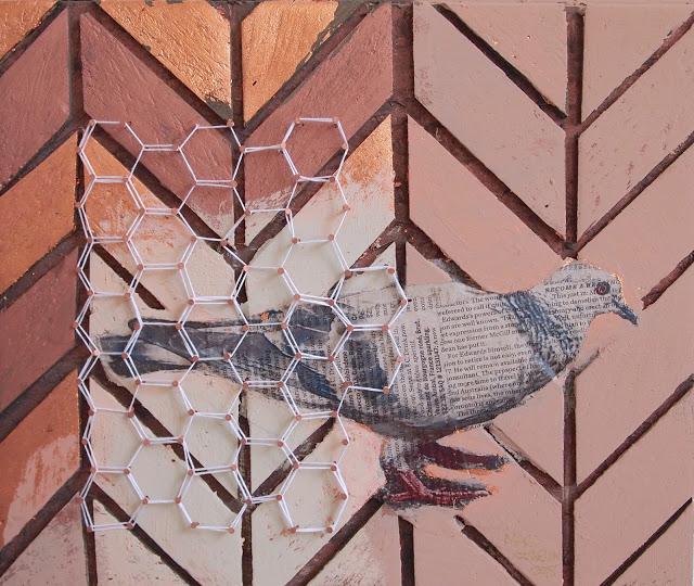 Pigeon du centre-ville