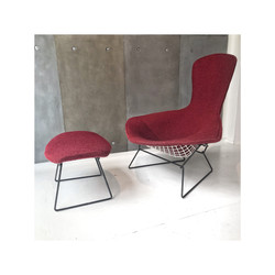 'Bird chair '' Harry Bertoia