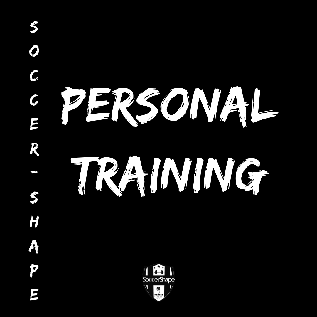 Private + Small Group Training