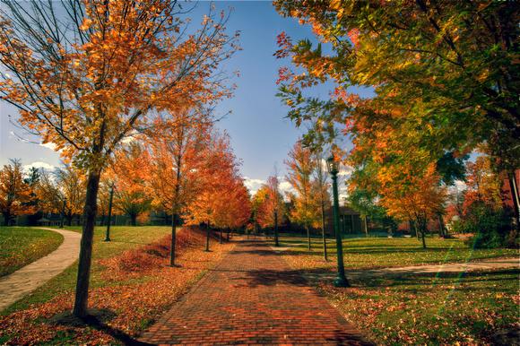 Allegheny College walkway