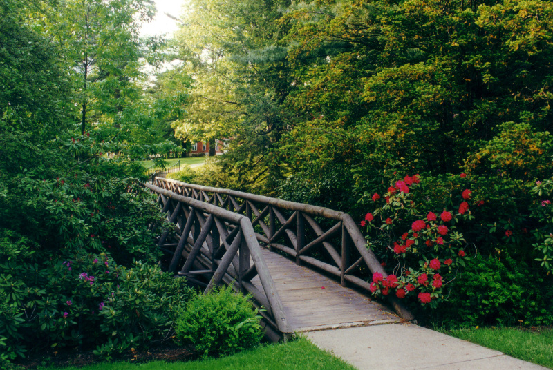 Bridge, Allegheny College