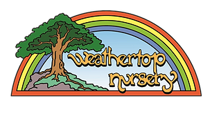 Logo for Weathertop 002.png