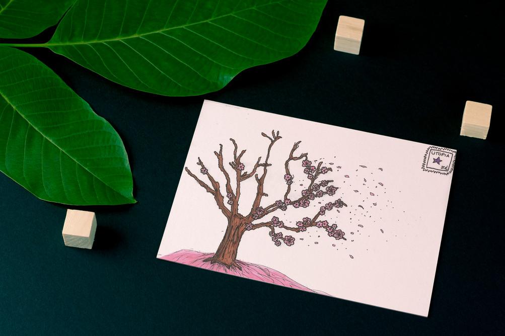 postcard_mockup_s3.jpg