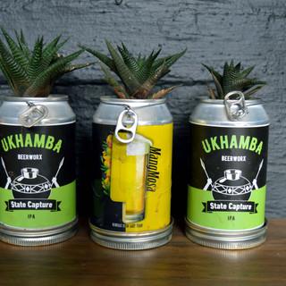 Beer can planters 2.jpg