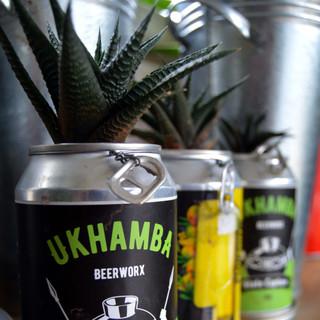 Beer can planters.jpg