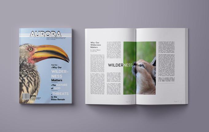 Aurora Branding & Magazine - View