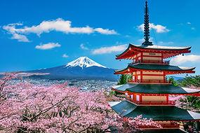 cherry-blossoms-spring-chureito-pagoda-f