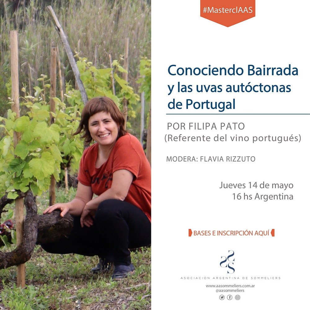 vinos de Portugal masterclass