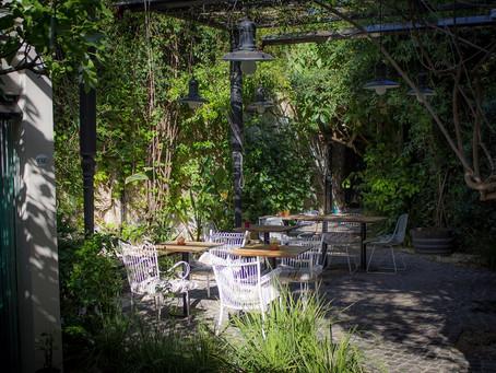 Vino + maridaje + aire libre en los Atardeceres en La Malbequería
