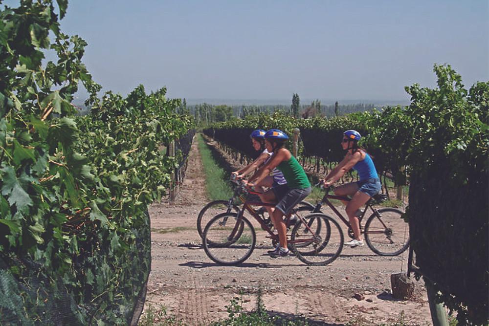 enoturismo en Mendoza Bodegas Bianchi