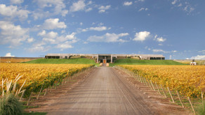 Vinos patagónicos en el Amex Dining Program