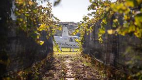 Wine & Fly: un paseo en helicóptero por los viñedos