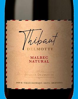 Thibaut Delmotte