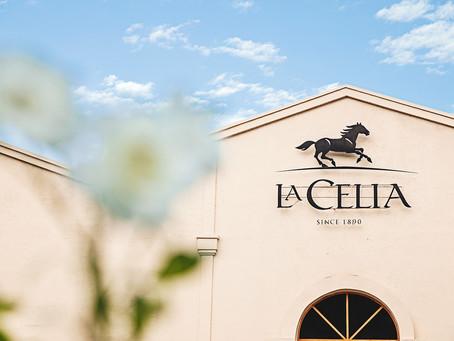 Estación del Vino: La Celia presenta su tienda virtual