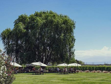 Bodega Norton celebra la vendimia con un menú especial