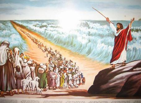 53-1205 La résurrection
