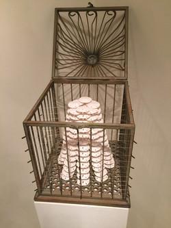Cage, no door, top opens