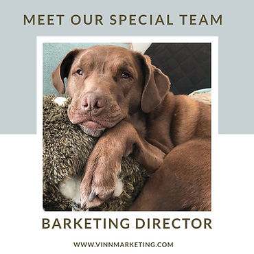 Barketing Director.jpg