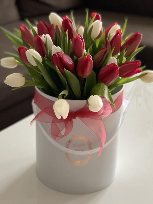 Tulpen Box
