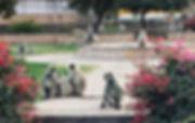 PHOTO-2020-03-02-23-10-20.jpg