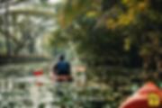 Kerala_Backwater_Kayak.jpg.webp