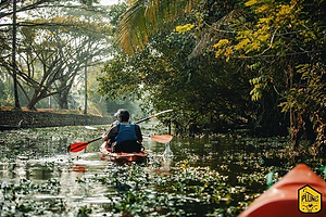 Kerala_Backwater_Kayak.jpg.webp